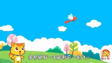猫小帅儿歌红蜻蜓